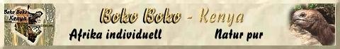 Boko Boko Kikambala